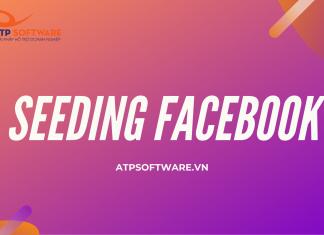 Đừng quên Seeding khi chạy quảng cáo Facbook Ads